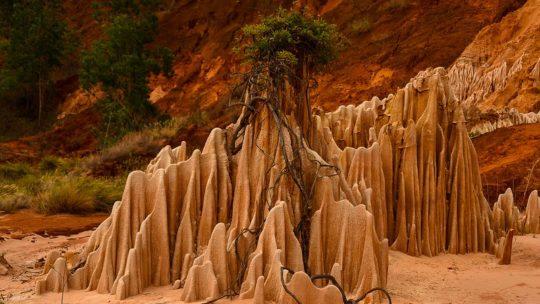 Voyage à Madagascar : 4 merveilles naturelles incontournables